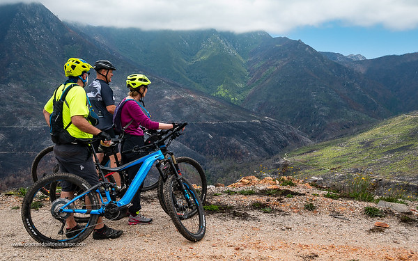The 2019 Giant Trance e+2 Mountain Bike. George. Garden Route. Western Cape. South Africa
