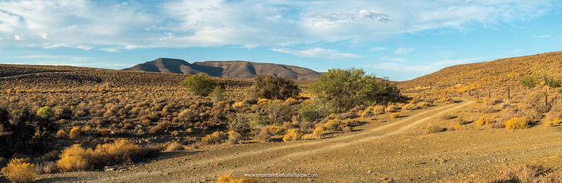 Tankwa Karoo scene. Northern Cape. South Africa.
