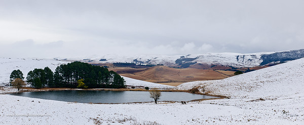 Snow scene near Nottingham Road . KwaZulu Natal Midlands. South Africa