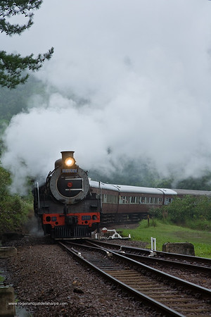 Steam Railway day at Shongweni. KwaZulu Natal. South Africa