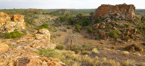 View from the top of Mapungubwe Hill. Limpopo Province. South Africa.