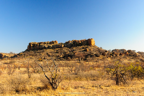View of Mapungubwe Hill. Mapungubwe National Park. Limpopo Province. South Africa.