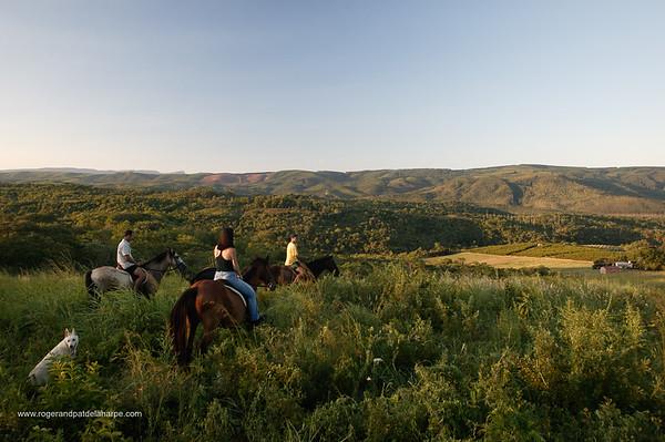 Horse back riding with Induna Adventures. Hazyview. Mpumalanga. South Africa