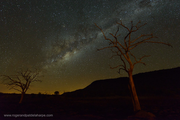 The Milky Way night sky. Madikwe Game Reserve. North West Province. South Africa