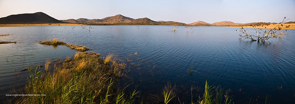 Pilanesberg Game Reserve. North West Province. South Africa