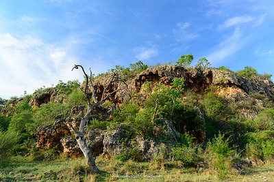 Tufa (travertine) caves. Madikwe Game Reserve. North West Province. South Africa