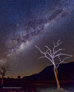 Photo Safari - Milky Way