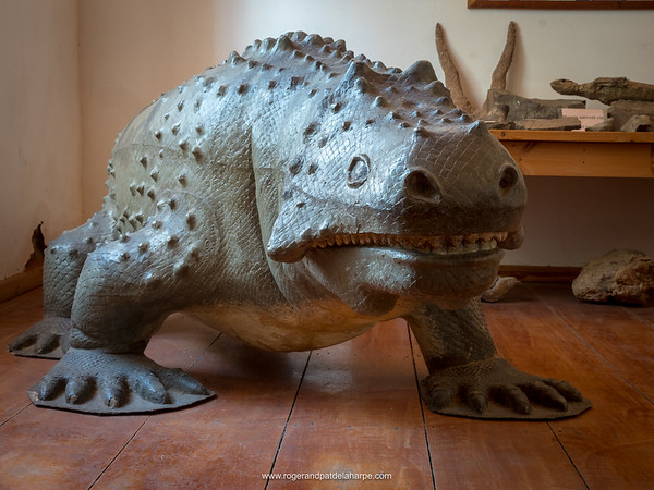 Model of a Bradysaurus in the Fraserburg Museum. Northern Cape. South Africa.