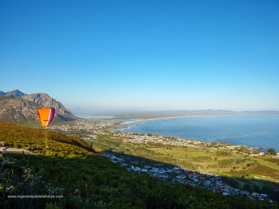 Hang gliding from the Vogelgat Nature Reserve. Hermanus. Western Cape. South Africa