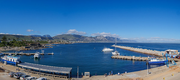 Image Number GH5R385427-Pano. View of boats in the new harbour and the Kleinrivier Mountains. Hermanus. Whale Coast. Overberg. Western Cape. South Africa.