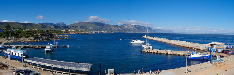 Image Number GH5R385443-Pano. View of boats in the new harbour and the Kleinrivier Mountains. Hermanus. Whale Coast. Overberg. Western Cape. South Africa.