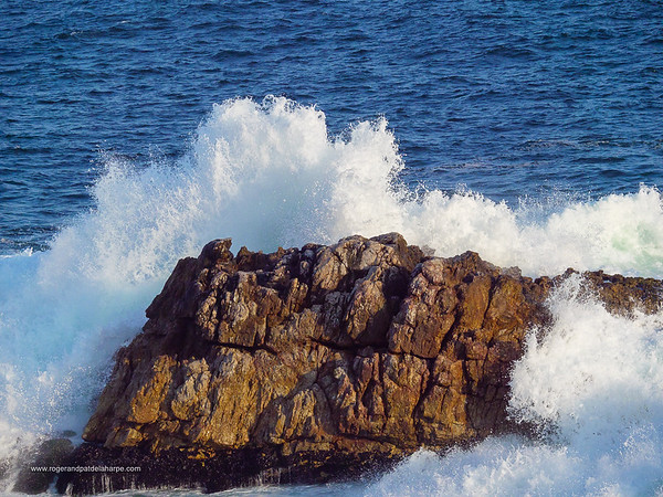 Image Number GH5R409220. Wave crashing into rock. Hermanus. Whale Coast. Overberg. Western Cape. South Africa