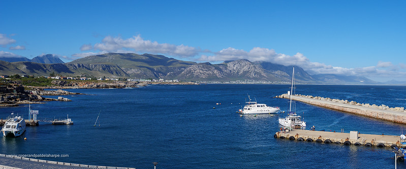 Image Number GH5R385459-Pano. View of boats in the new harbour and the Kleinrivier Mountains. Hermanus. Whale Coast. Overberg. Western Cape. South Africa.
