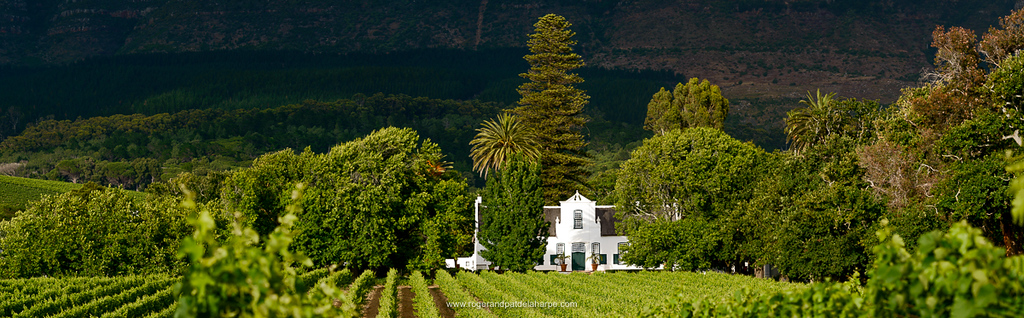 Buitenverwachting Wine Farm. Constantia. Cape Town, South Africa