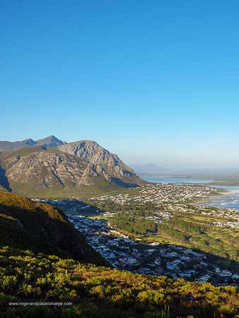 View of Hermanus from the Vogelgat Nature Reserve. Western Cape. South Africa