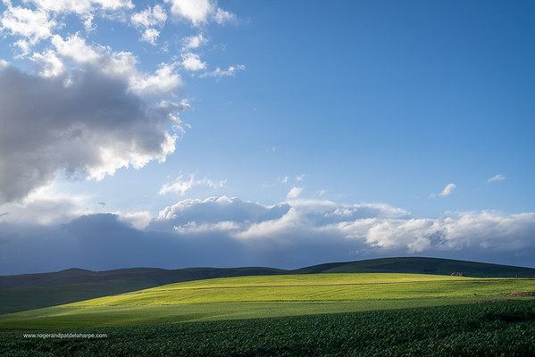 Image Number a7Riv402954. Farm lands near Greyton. Overberg. Western Cape. South Africa.