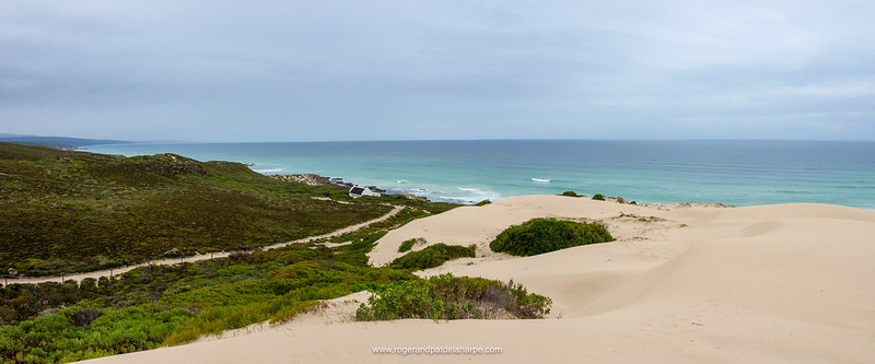 Coastal dunes at De Hoop Nature Reserve. Western Cape. South Africa