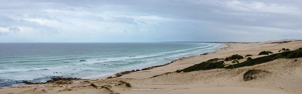 Coastal dunes at De Hoop Nature Reserve. Western Cape. South Africa