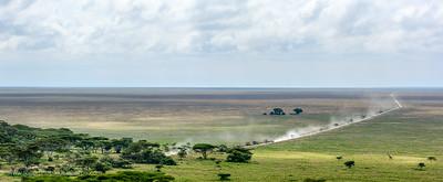 Masai giraffe, aka Maasai giraffe, or Kilimanjaro giraffe (Giraffa camelopardalis tippelskirchi) and view south towards Ngorongoro Conservation Area (NCA) from Naabi Hill Gate. Serengeti National Park. Tanzania