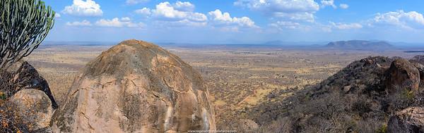 Scenic view of Ruaha National Park. Tanzania