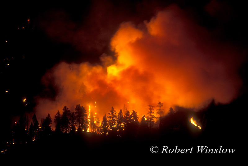 ENVIRONMENT STOCK PHOTO LISTINGS 