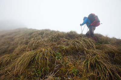 Tramper struggles in bad weather on Southern Crossing route, Tararua Forest Park
