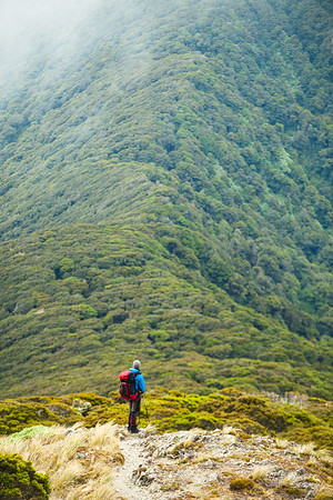 Tramper on Southern Crossing route, Tararua Forest Park
