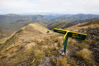 Pukematawai Junction, Tararua Forest Park