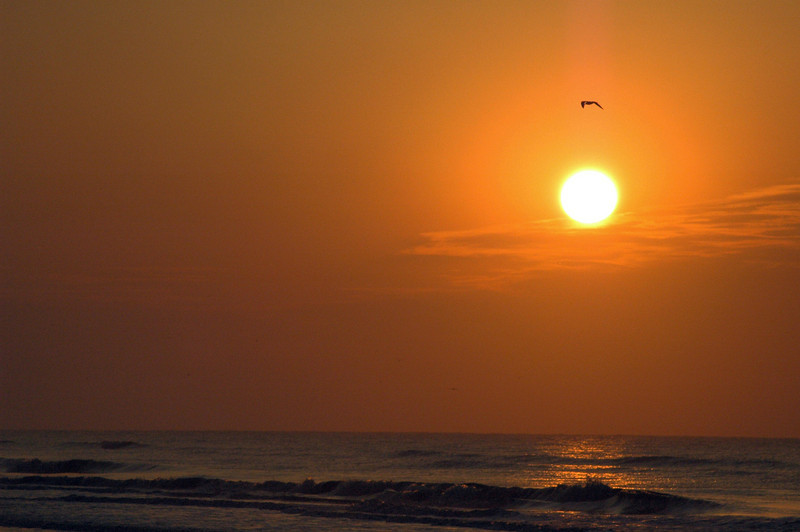 A beautiful amber sunrise over the beach at Hilton Head