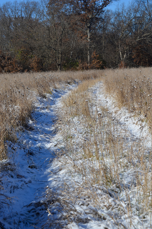 Other Paths-2