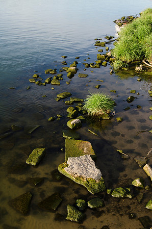 Waterscape-1