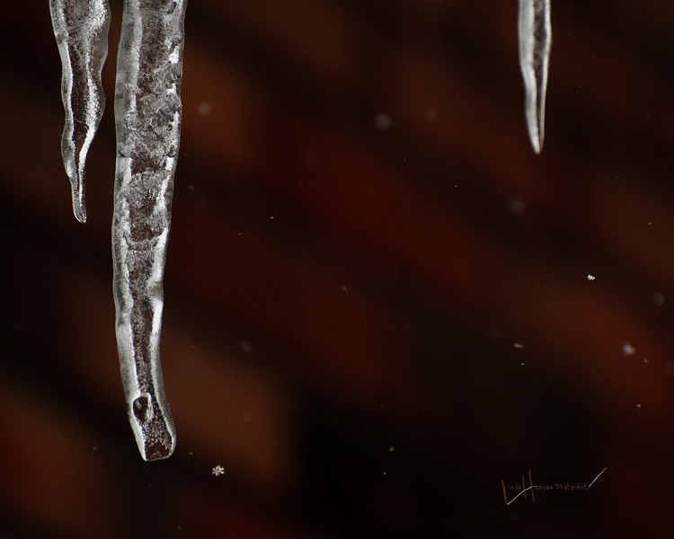 Snowflakes n'icicles