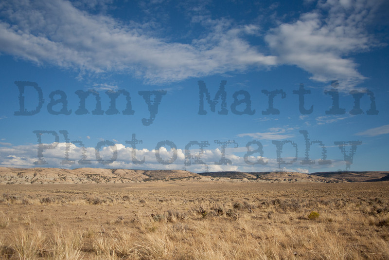 Rangeland in the Little Snake river valley.  Moffat County, Colorado.