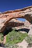 Natural Bridges National Monument, UT.