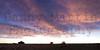 Sunrise<br /> Comanche National Grassland, Otero County, Colorado.