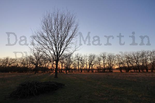 Stock Photography - Landscapes & Flora