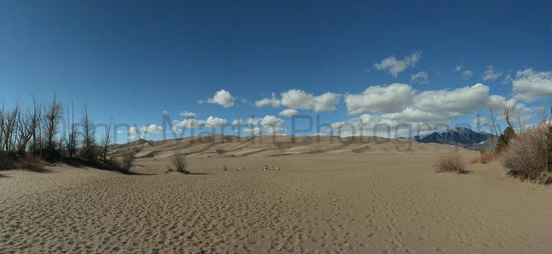 Tracks of visitors to Great Sand Dunes<br /> San Luis Valley, Colorado.<br /> *(stitched panorama)