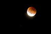 Blood moon (lunar eclipse)<br /> Fort Collins, Colorado<br /> September 2015