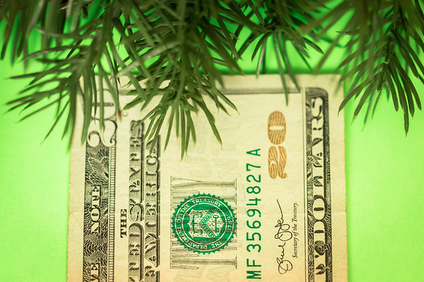 Money Doesn't Grow on Trees, Or Does It?