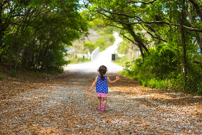Camp Helen State Park