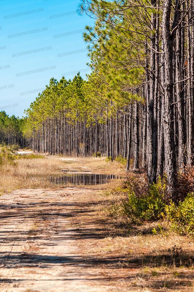 Conservation Park