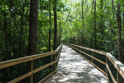 Turkey Creek Nature Trail