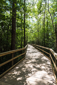 Turkey Creek Nature Trail