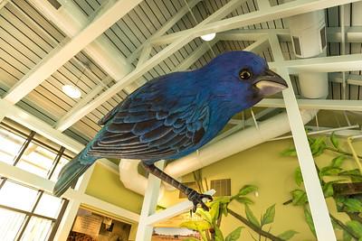E.O. Wilson Biophelia Center