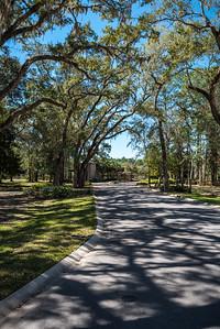 Churchill Oaks