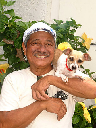 local man and his dog in front of yellow hibiscus flowers, Kona, Big Island of Hawaii