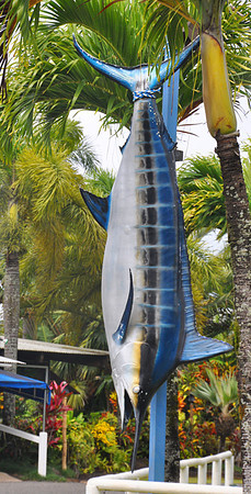 marlin replica