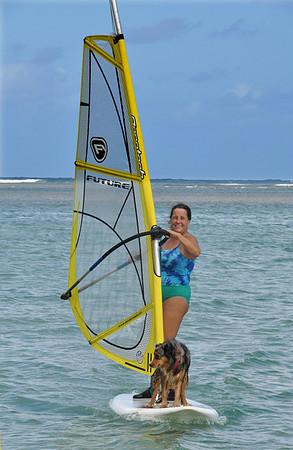 Windsurfer and dog off Anini Beach, Kauai