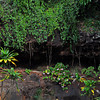 Allerton Garden, National Tropical Botanical Garden (NTBG), Kauai