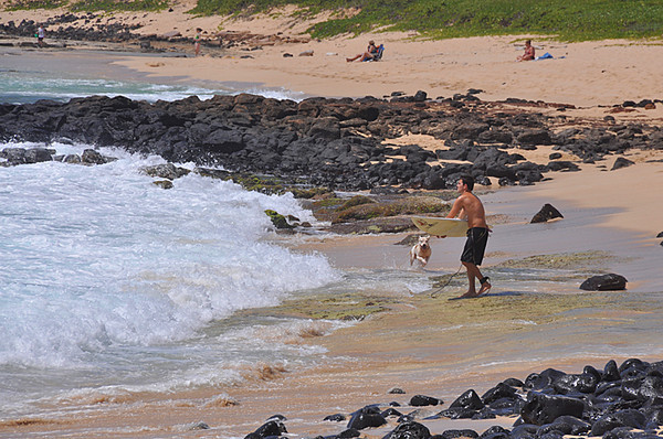 boogieboarder and dog, Shipwreck Beach, Poipu, Kauai